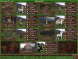 Heroes Chronicles: Warlords of the Wastelands - Screenshots - Bild 11
