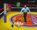 Victory Boxing Contender  Archiv - Screenshots - Bild 4