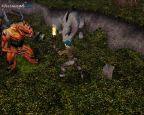 Neverwinter Nights - Screenshots - Bild 13