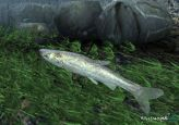 Reel Fishing 3  Archiv - Screenshots - Bild 14