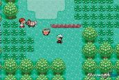 Pokémon Emerald (GBA)  Archiv - Screenshots - Bild 3