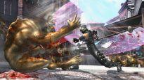 Ninja Gaiden 2 - Screenshots - Bild 9