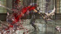 Ninja Gaiden 2 - Screenshots - Bild 23