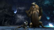 Monster Hunter 3 - Screenshots - Bild 22