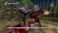 Ninja Gaiden Sigma - Screenshots - Bild 10