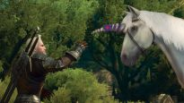 The Witcher 3: Blood and Wine - Screenshots - Bild 9