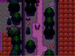 Pokémon Uranium - Screenshots - Bild 9