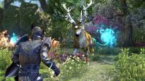 The Elder Scrolls Online: Summerset - Screenshots - Bild 3