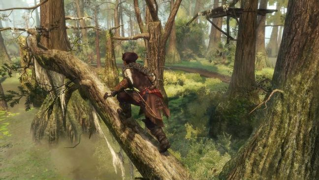 Assassin's Creed III - Screenshots - Bild 1