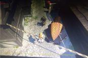 Assassin's Creed Ragnarok - Screenshots - Bild 6