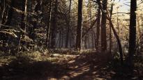 Blair Witch - Screenshots - Bild 2