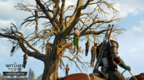 The Witcher 3: Wild Hunt - Screenshots - Bild 8