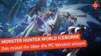 Monster Hunter World Iceborne - Das müsst ihr über die PC-Version wissen