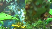 Monster Hunter Stories - Opening Movie Trailer (jap.)